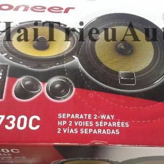 Pioneer TS-D1730C