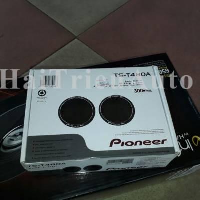 Pioneer TS-T480A